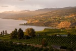 beautiful okanagan tours